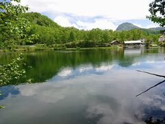 坂を上り、少し下ると木戸池到着です。 鯉がたくさんいる、綺麗な池です。