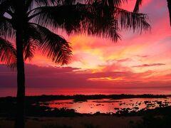 ツアーの最後は星空観賞ですが、途中シャークスコープというシュノーケリングで有名な場所で少し車から下してもらえました。 ちょうど夕日が綺麗な時間帯だったので。 翌日の朝には飛行場から日本へ戻る予定なので、またハワイに来れる事を願いつつ、この心洗われる景色を目に焼き付けます。  星空は街の明かりが届かない場所との事で、とある牧場内での観賞となりました。一般の方が経営する牧場との事で詳しい場所は分かりませんが、満点の星空を眺め、今回初となったハワイ旅行の締めくくりとなりました。