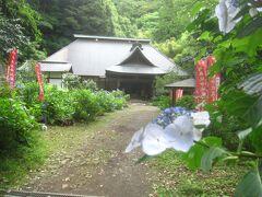 登り始めてから15分ほどで阿弥陀寺に到着  あじさい寺と言われています 徳川14代将軍家茂の正室和宮のご位牌が祀られているそうです