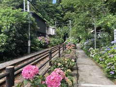 御霊神社(神奈川県鎌倉市)