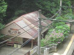 塔ノ沢駅に来ました まだ電車が来ないので、反対ホームにある深澤銭洗弁天へ行きます  跨線橋からは駅舎横に咲くアジサイが眺められます