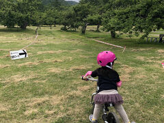 沢山食べて、来週の自転車レースの下見に八剣山果樹園へ。 出場予定の兄。 上りに苦戦して、半泣き。 ストライダーの娘は楽しそうに蹴り進んでました!
