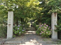 いきなりですが、幸田のあじさい寺、「本光寺」に到着です。