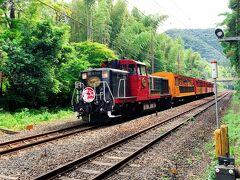 紅葉の時期は事前に予約しないと乗ることが出来ないくらい人気の嵯峨野トロッコ列車。 この時期は特にそんなこともナイので、1度は乗ってみようかな♪なんて思っていたのですが、時間的に今日乗ることは難しいという事が分かったので、せめて嵐山に来た時に踏み切りを通過するトロッコ列車を撮影しよう!と思って時間を調整して待ち構えました。 いつかは絶対に乗りたいです!
