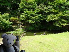 県下一の古庭園という築山泉水庭で、「東の毛越寺(平泉、行ったことあるけどクマ連れの前なので旅行記なし)と西の宗隣寺」のみに現存する鎌倉時代の遺構を残す貴重な書院庭園である「龍心庭」です。