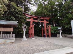 駅から15分ほど歩いて、ようやく弥彦神社の鳥居が見えてきました。
