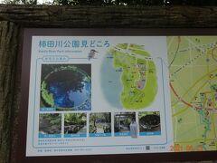 ホテルにチェックインしてから、夕食まで時間がありましたので、過去に訪れた事のあります、柿田川公園の湧水を見学に行きました。