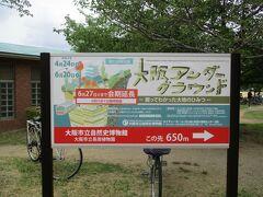 朝のウォーキングとラジオ体操を終えて一度自宅に戻って美容室に行ってから本日2度目の長居公園へ! まずは、大阪市立自然史博物館で開催の「大阪アンダーグラウンド -掘ってわかった大地のひみつ-」へ。 本来であれば、2021年6月20日で終了予定でしたが、緊急事態宣言の影響で休園になりましたので6月27日までの会期延長になりました。