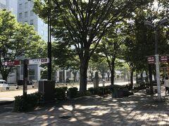 仙台最終日はお昼過ぎの新幹線ですので、仙台の中心部をお散歩。。