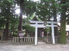 駅の入口にあるのが山神(さんじん)神社です 創建は永禄年間と云われていますが不詳、大山祇命・木花咲耶姫命を祭神とする大平台の鎮守社でありました
