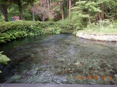 きれいな湧水が奥から流れて来ています・・・