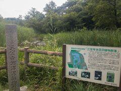 三宝寺池には国の天然記念物に指定された「三宝寺池沼沢植物群落」があり、貴重な植物たちが保護されています。
