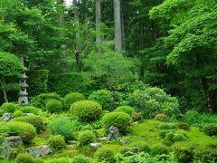 客殿の庭園は聚碧園と呼ばれている池泉観賞式庭園です。 奥行きがあり、普通に眺めたら見えなそうな奥まできちんと手入れされてる感じでした。