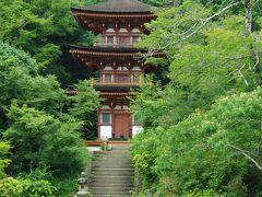 私が1番見たかったのは、この三重塔です!  浄瑠璃寺という寺号は、三重塔の内陣に安置されている薬師如来の浄土「浄瑠璃世界」からきているそうです(内部の見学はできません)。 三重塔と、目の前の池が、霧がかった雨の日などは、幻想的に見えてとっても素敵だったので是非見てみたかったのです。 私が参拝した日はそのようには見えませんでしたが、木々の奥に隠れるように立つ三重塔がとっても素敵でした。