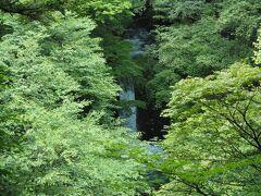 小泉の滝は木々の間から。冬ははっきり見えましたが、やはりこの季節は葉生い茂ってかなり隠れています。