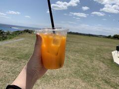 岬にあるカフェでたんかんジュースを購入