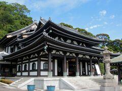 観音堂では本尊である「十一面観世音菩薩」造立1300年を記念して全身の総開帳や御足参りが行われていました。(写真は昨年のものです) https://www.hasedera.jp/p1300/  クッシーは奈良の長谷寺で御足参りをしたことがありますが、奈良の観音像と鎌倉の観音像は同じ楠から造られたと言われています。  ※長谷寺HPより この世の人々を苦しみや悩みから救うため、観音菩薩の霊像の造立を志した徳道上人。上人は一本の楠の霊木から二体の観音像を造り、一体は大和(奈良)長谷寺にお祀りし、一体はご縁のある土地を求めて海に流しました。霊像は15年のあいだ海のうえを漂い、ついに相模(神奈川)にながれつきました。それがここ鎌倉長谷寺に祀られている観音像です。
