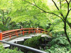 緑の中に浮かんだ赤い欄干!  教えて頂いた「河鹿橋」。  河鹿橋の傍らには、露天風呂もありました。