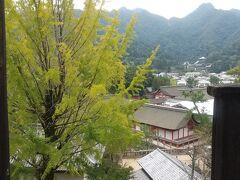 帰り道、ぶらぶら歩いて豊国神社にきました。ここは豊臣秀吉が作った(正しくは作れ!と言ったですね) 神社です。