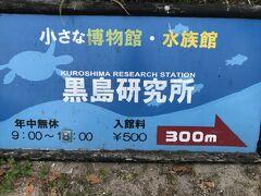 黒島の一大観光施設、黒島研究所。 通称、亀研(カメケン)。 海の生き物以外にも、ハブやフクロウ、ヤシガニなどもいて、意外と楽しいところです。