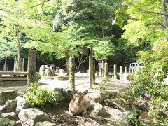 食後の朝の散策 まだ観光客が多くおらず さわやか宮島