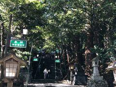 車で5分ほど。高千穂神社にやってきた。