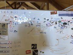 野付半島ネイチャーセンターに到着。 ホワイトボードには野付半島のマップにどんな鳥・動物が見られたか書いてあります。 野付半島の先端にはトドワラがありますが、ネイチャーセンターから先は車で行けません。この日はとにかく風が強くて寒いので、車で動物を探すことに。