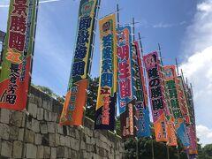 来週から名古屋場所(7/9~23 ドルフィンズアリーナ)やったようで、至るところに幟が立ってた!