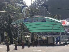 下田といえば水族館。