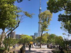 隅田公園 コロナ禍といえ家族連れでいっぱい。これで大丈夫なのか?いや大丈夫でないから東京は蔓延しているのでしょうね。