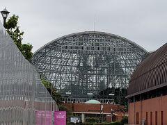 熱帯植物館です。
