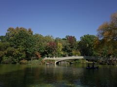 秋はセントラルパークもきれいです。