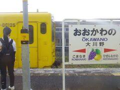 3か月前にも見た大川野駅の駅名標。