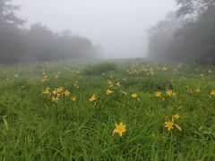霧がもやーっと
