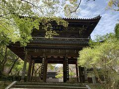 山口と言えば長州藩。 週末は車を借りて高杉晋作ゆかりの地巡りをしてきました。  こちらのお寺は高杉晋作が挙兵した地として知られています。山門が立派です。