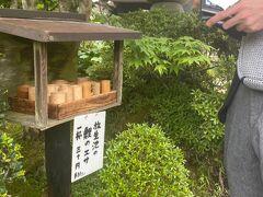 輪王寺庭園にて鯉に餌をあげたがる夫。  3つ買って、自分は両手でザアァッて派手にばら撒いてた。笑
