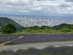高い授業料を払ってホテルを後にしました。帰りはお天気が悪くならないうちに幌見峠へ。名前の通り、幌見峠は札幌が一望できる場所。