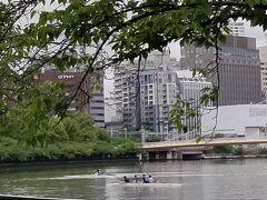 桜ノ宮公園に流れる大川にはボート部があって 練習している姿をよく見かけるのですが・・・