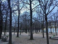 ヴァンドーム広場からちょと歩くとチュイルリー公園があります。 冬なので葉っぱが無い木々が立ち並んでいます。 朝は空気がきれいで気持ちいいです。