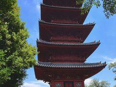 再び仁王門を潜り、重要文化財の五重塔の脇を通り、お墓参りへ向かいます。