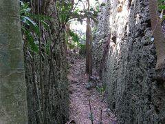 大地の裂け目。島の北側にあるバリバリ岩。 行き止まりになるまで前へ進みましょう。