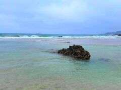 多々戸浜も入田浜も毎年最高水質AAを獲得する美しいビーチです!