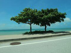 海中道路から見える海めっちゃ綺麗、地元の車もけっこう路駐していたよ