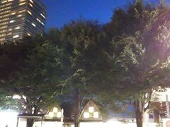 元々、駅前には「志村けんの木」があるのですが、今回は、この木の近くに銅像が建ったということで、この目でしっかり見てみたいと思います☆  まさにドリフのネタの「志村、後ろ!」笑