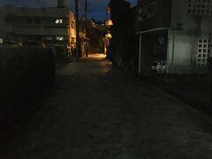 街灯はありますが暗いです。自宅から懐中電灯を持ってきていて良かった~