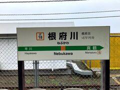 ヒルトン小田原リゾート&スパに向かいます 小田原から二駅目「根府川」で下車