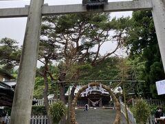 最後は函館八幡宮 茅の輪くぐって 無病息災願います