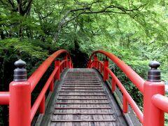 青紅葉に映える河鹿橋