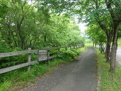 湖畔の遊歩道を行きます。 以前はあった左へ抜ける道は廃止されたようですね。