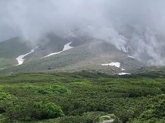 山頂見えないのが  残念 でもチングルマ満開